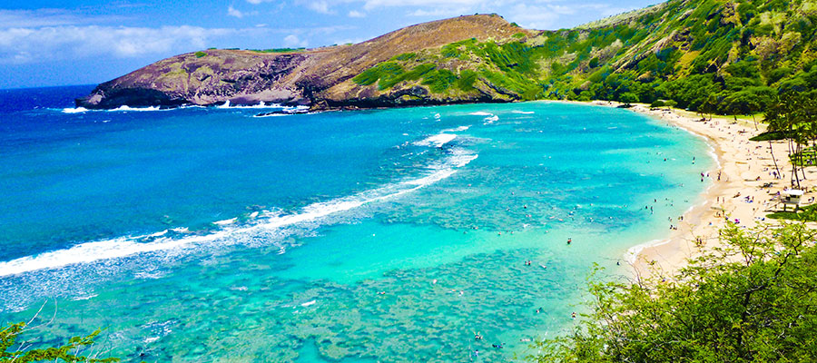 destinationgalleries-hawaii-snorkelingbay900x400