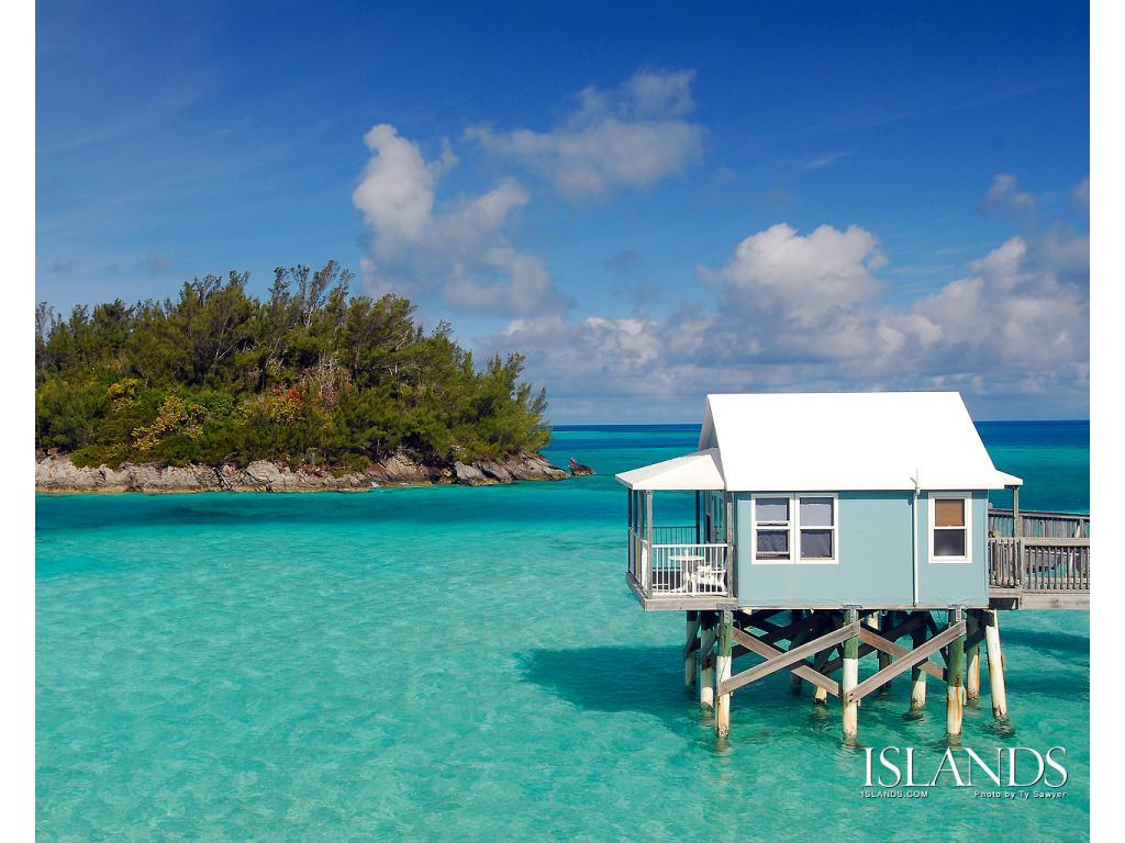 Amazing-Bermuda