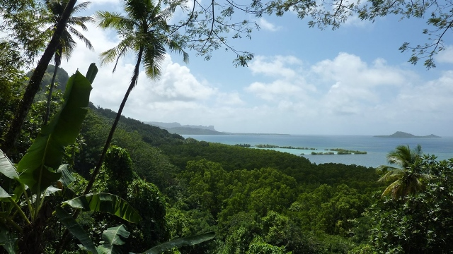 Caroline Islands Yap