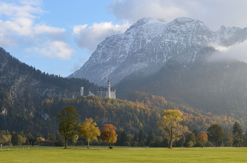 Neuschwanstein_meadow800