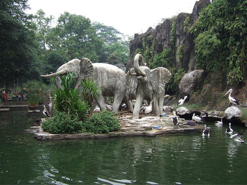 zoo_jakarta_indonesia