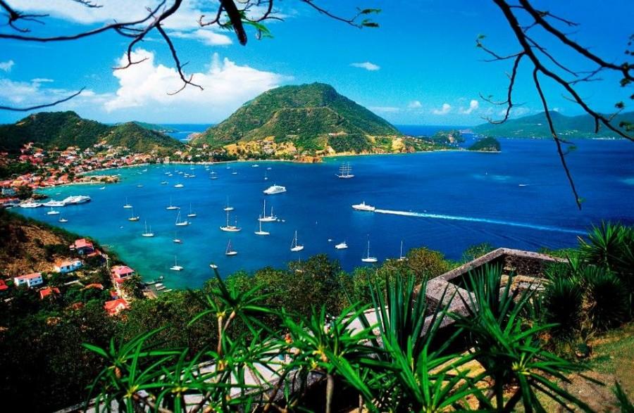 Guadaloupe island