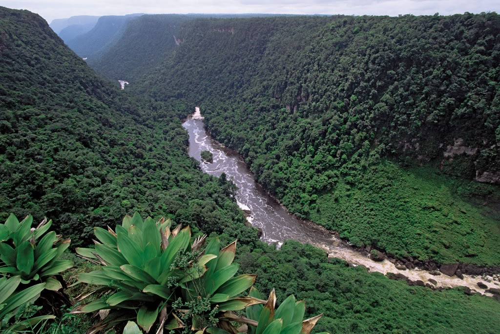Guyana_Canyon