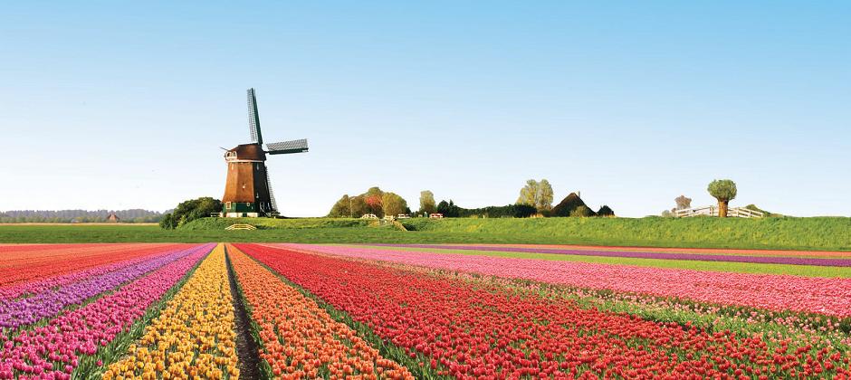 Netherlands-Accountants