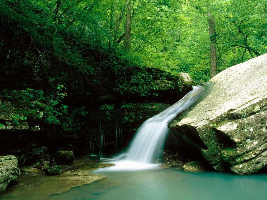 Arkansas-Picture