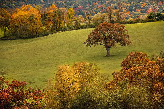 Connecticut_land