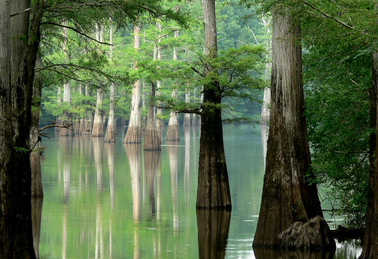 White_River,_Arkansas