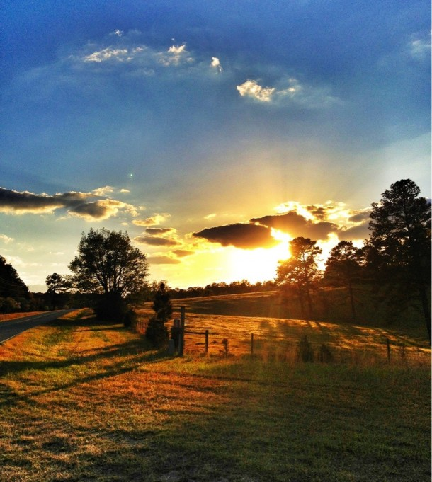 beautiful-sunset-on-the-fields-of-milledgeville-georgia-usa--18141