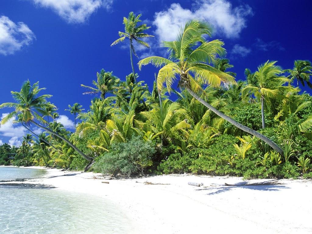 Palm-Beach-Solomon-Islands