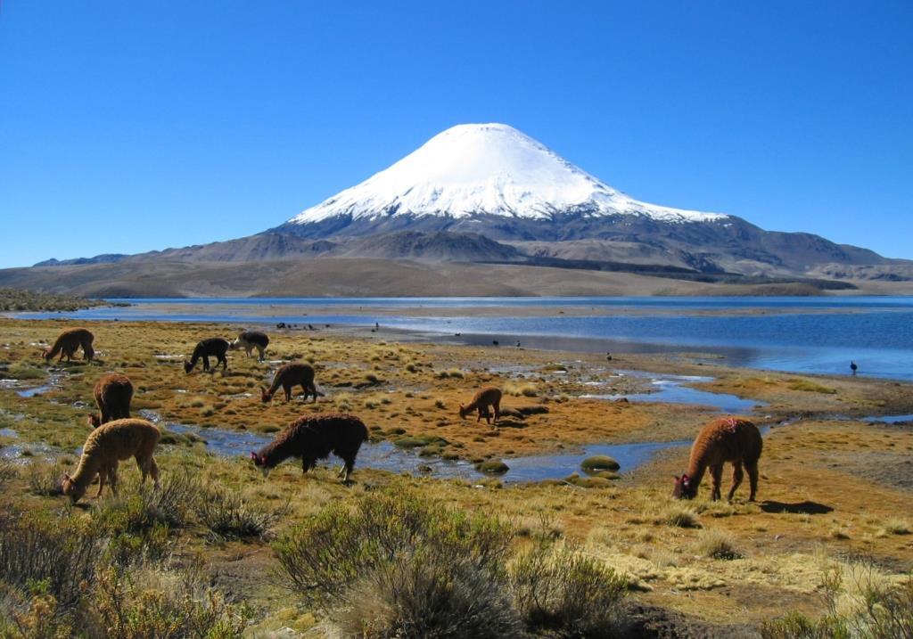 Parinacota_volcano