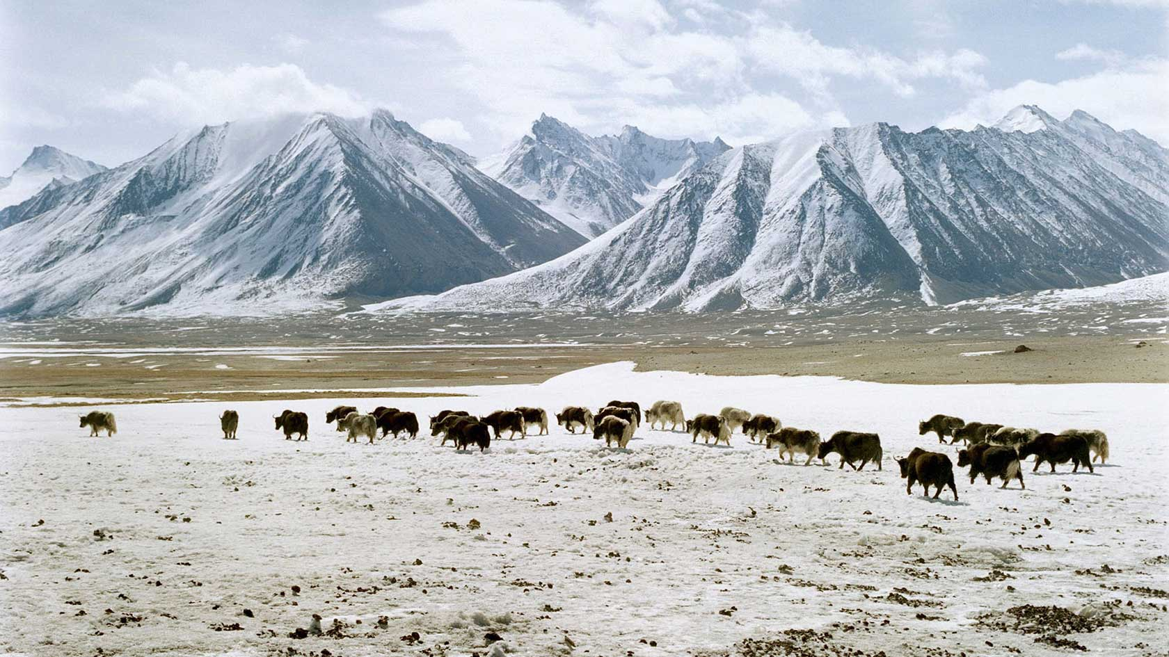 lets-travel-to-afghanistan-asia-with-frederic-lagrange-featured