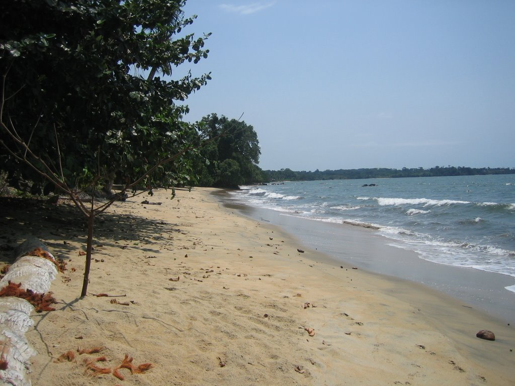 Cameroon 2