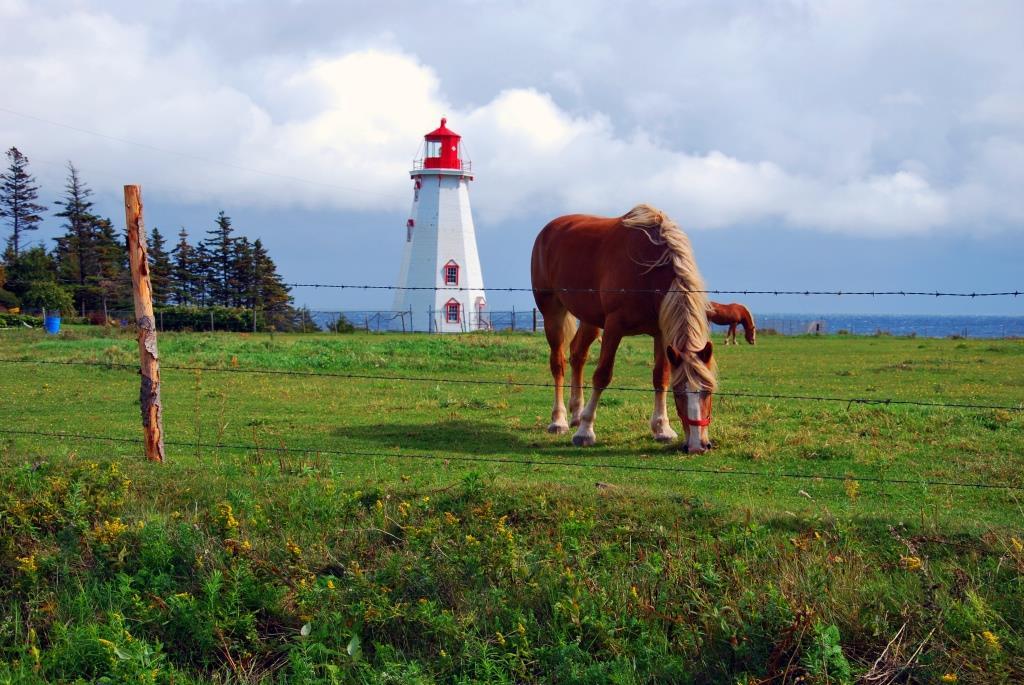 Panmure_island_lighthouse