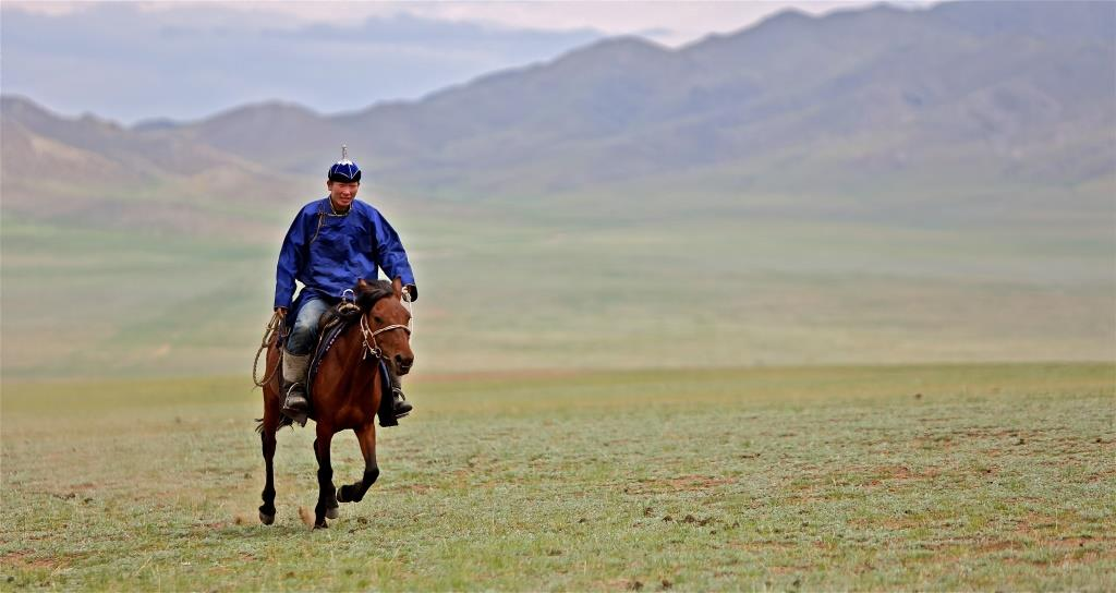 Rider_in_Mongolia,_2012