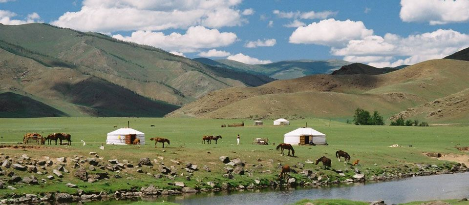 volunteer with Mongolia nomads