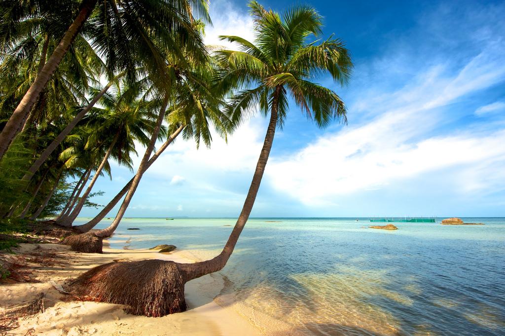 Phuquoc-Island-Coco