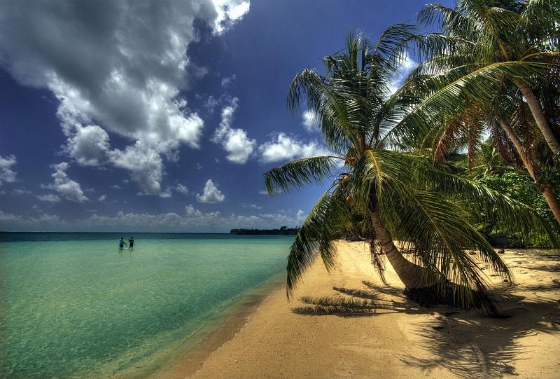 beach5_f
