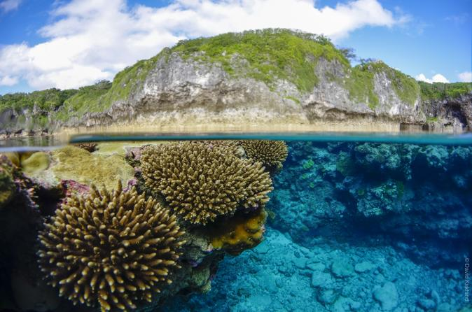 Quotes On Fringing Reefs: Tourist Destinations