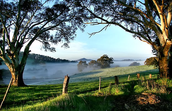 Adelaide-Hills-1