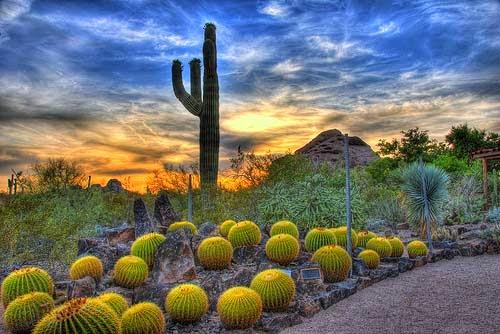 Phoenix Arizona Tourist Destinations
