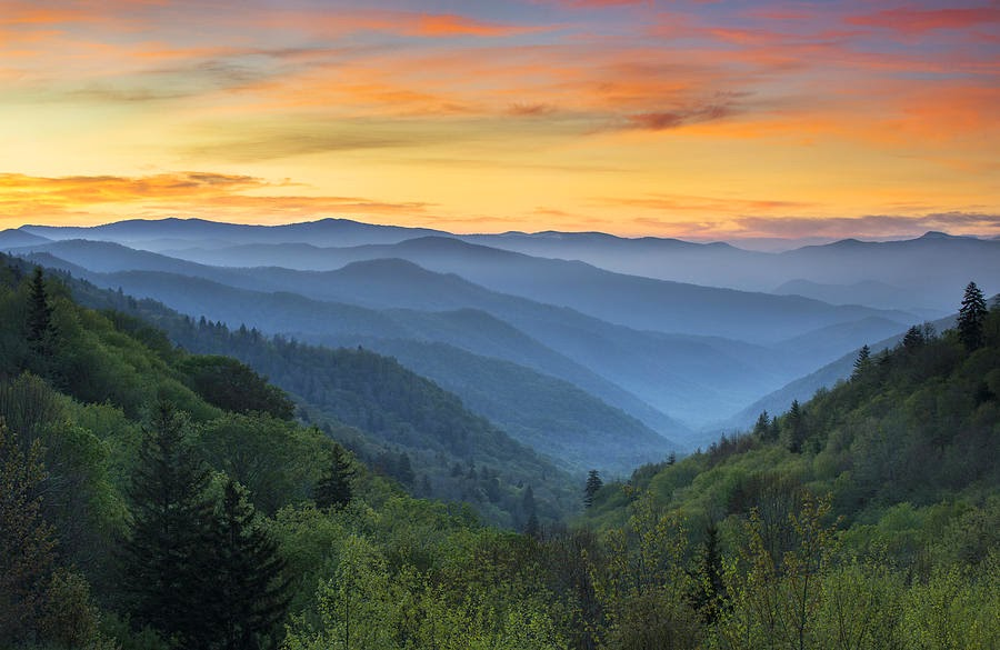 Great Smoky Mountain National Park Tennessee Usa