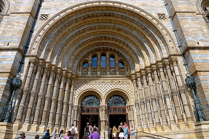 British Natural History Museum London Highlights