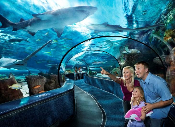 Aquarium Myrtle beach