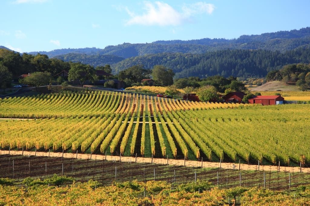 Napa Valley attractions