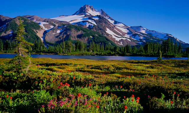 jeff-park-Oregon