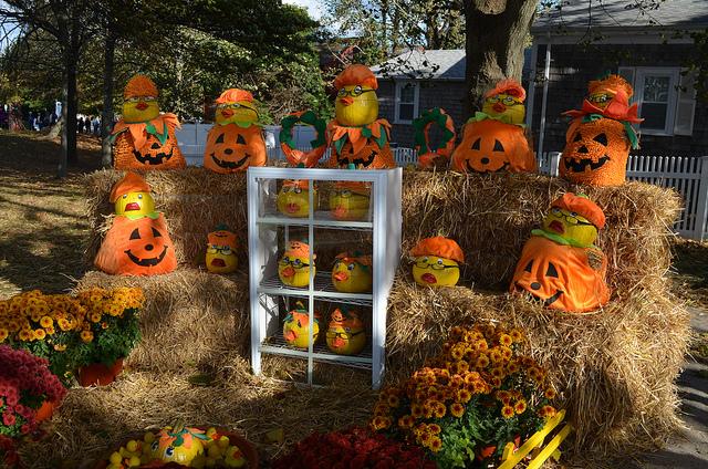 Chatham Halloween