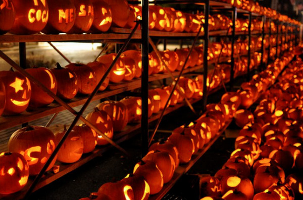 Chicago Halloween Events-Great-Highwood Pumpkin Festival
