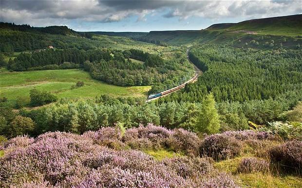 moors train North York Moors, England